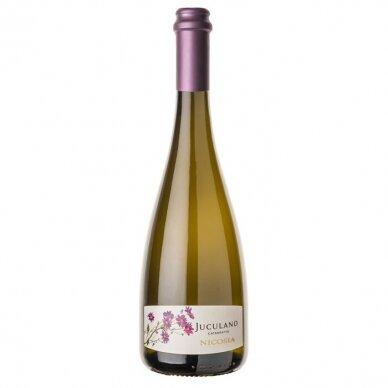 Baltasis vynas Nicosia Juculano Catarratto Frizzante Terre Siciliane IGT, 750 ml