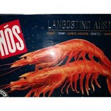 Krevetės raudonosios Argentininės L1